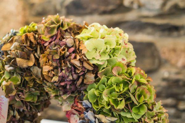 corona-flora-hortensias-flores-secas